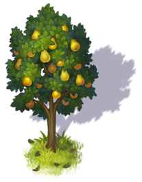 pear_tree_3.png