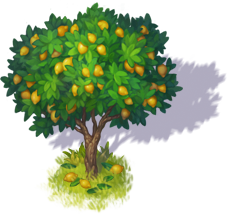 lemon_tree_3.png