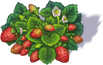 strawberry_3.png